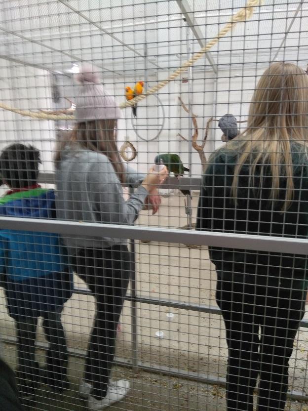 Zoo Zajac gratis alternatief voor dierentuin 7