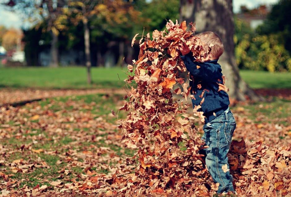 5 indoor spelletjes kinderverjaardag bladeren rapen