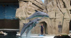 Uittip zomervakantie Duisburg Zoo