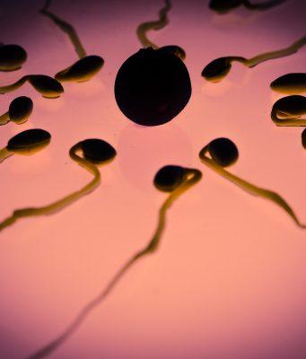 Zo kom je erachter dat je ovuleert en 5 tekenen dat je problemen hebt met ovulatie