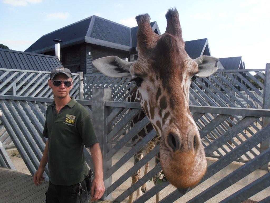 Doe eens iets anders met je foto maak er een 3D poster van giraf
